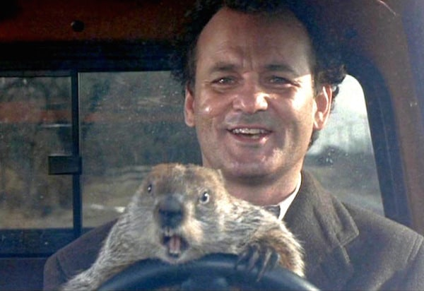 """See """"Groundhog Day"""" on Sunday at North County Regional Library"""