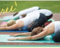 Free Yoga in Davidson on Wednesdays