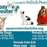 Save up to 50% on spaying and neutering your pet