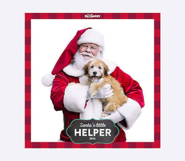 Free pet pictures with santa