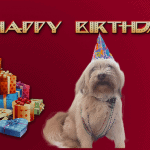 Happy-Birthday-Harlow