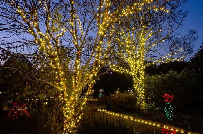 Sparkle Glow New Year 39 S Eve At Daniel Stowe Botanical Garden Charlotte On The Cheap