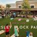 Ayrsley Block Party June 23