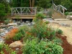 Free talks by master gardeners at UNC Charlotte Botanical Gardens