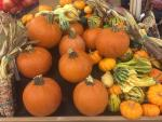 Charlotte trick-or-treating, Halloween and fall festivals, parties, movies, more