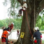 Tree Climbing Competition 4/13/13 & 4/14/13