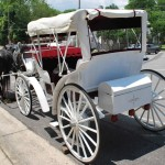 Free: Gaston County Museum's 9th Annual Family Fun Day 5/25/13
