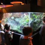 Educators: visit Discovery Place museums for free