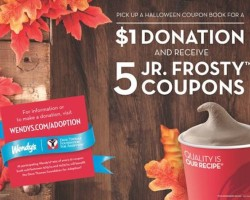 Wendy's coupon book just $1 for five Frosty desserts